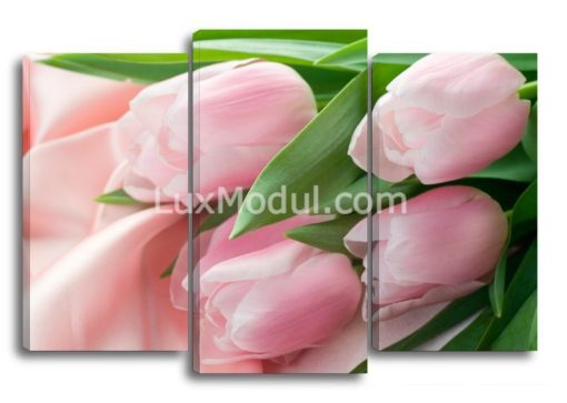 Розовые-тюльпаны-(75х110см)