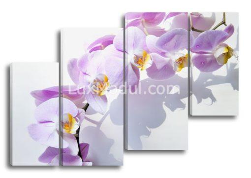 Веточка-орхидеи-(89х130см)
