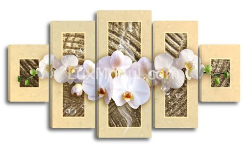 Композиция-из-орхидей(89х160см)