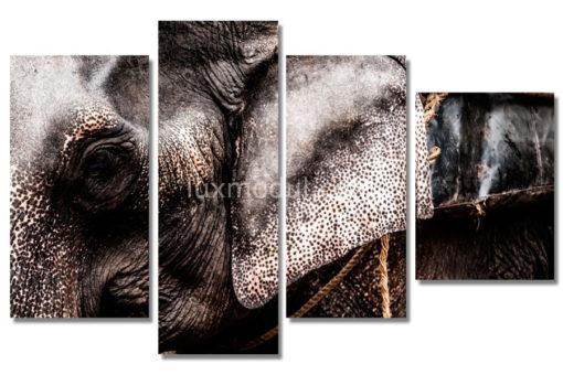 Слон-(89х142см)
