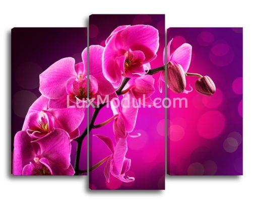 Веточка-орхидеи(89х115см)
