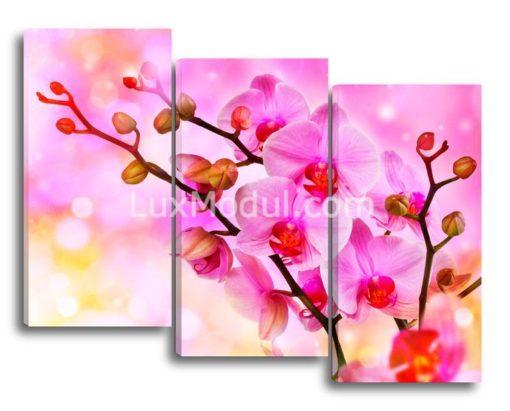 Веточки-орхидеи(89х112см)