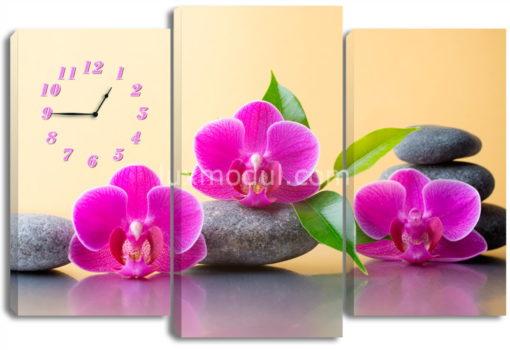 Три лиловые орхидеи