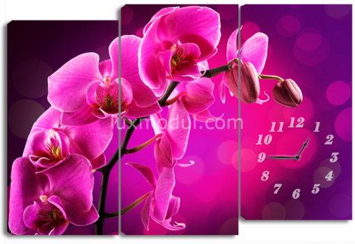 Веточка лиловой орхидеи