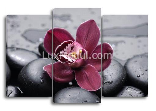 Бордовая-орхидея-(75х110см)