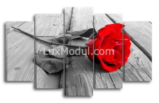 Одинокая-красная-роза-(89х145см)