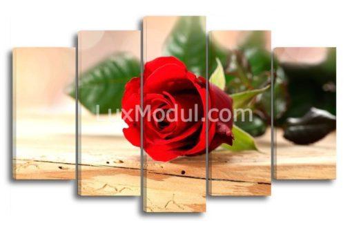 Романтичная-роза-(89х145см)