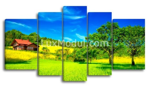 Солнечный-день-главная-(89х165см)