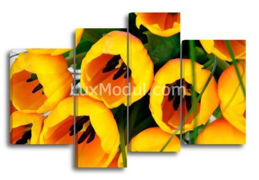 Желтые-тюльпаны-(89х132см)