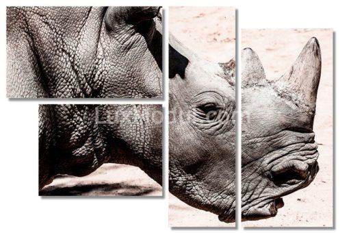 модульная картина полиптих носорог — фото