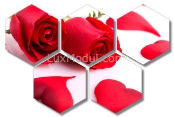 модульная картина 5 частей красные розы