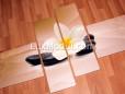 Франжипани (плюмерия) на камнях фото изготовленной картины