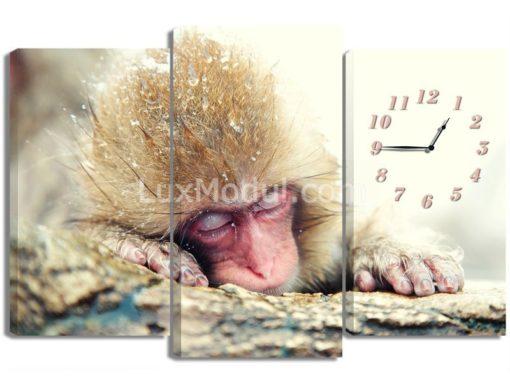 Спящая-обезьянка-(75х110см)