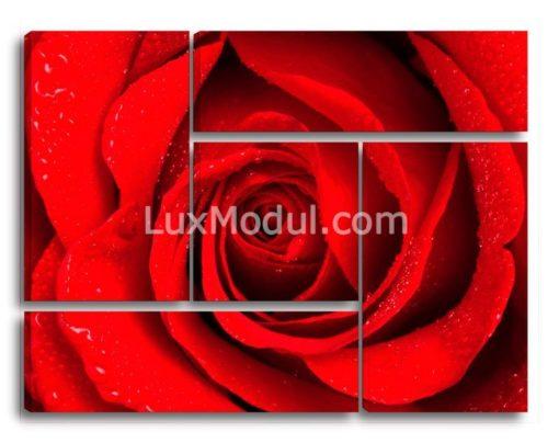 Роза-в-квадрате-(89х115см)