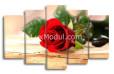 Модульная картина - роза