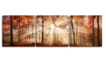 Модульная картина пейзаж в лесу — фото